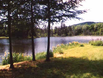 ladd pond cabins new hampshire private lake cabin rentals